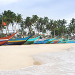 Traditional Sri Lankan Fishing Boats