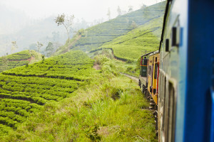 Train Tour in Nuwara Eliya Sri Lanka