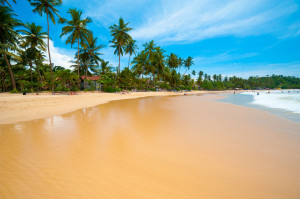 Tropical Beaches in Sri Lanka