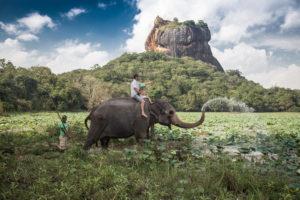 Elephant Ride in Sigiriya