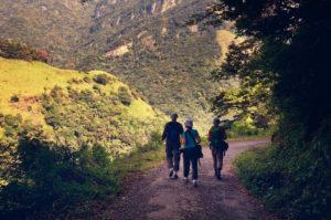 Hiking in Nuwara Eliya