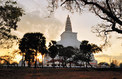 Buddhist Pilgrimage Tour in Sri Lanka
